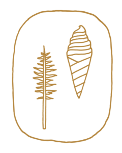 Sugarpine Stamp Tree